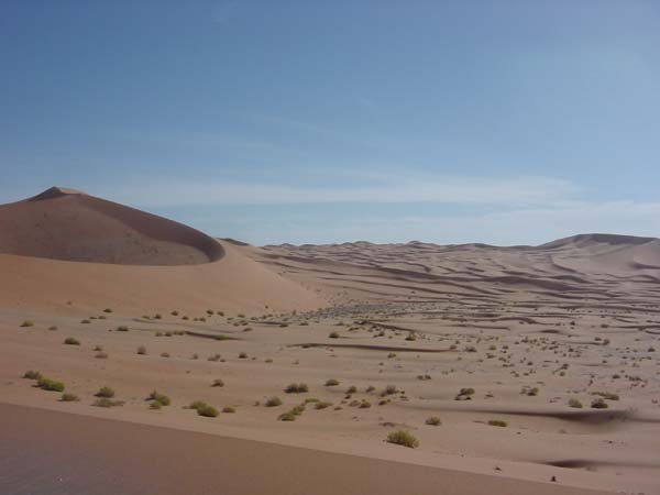 View of dunes in the area of Kharimat Khor Al Manahil (Photograph by Dr Mark Beech)